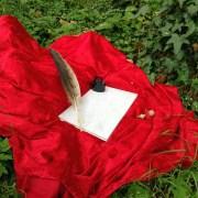 Feder, Tinte und Papier auf rotem Samttuch umgeben von Efeu