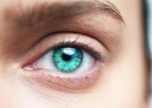 synthetic retina