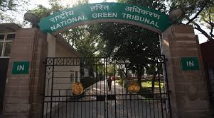 NGT to form one-member benches