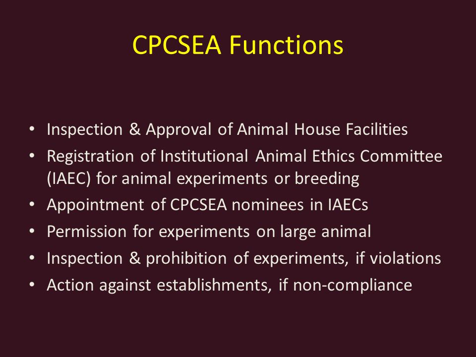 The ethical implications of experimenting on animals