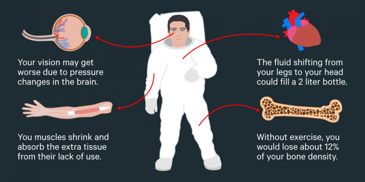 What happens to the human body in space?