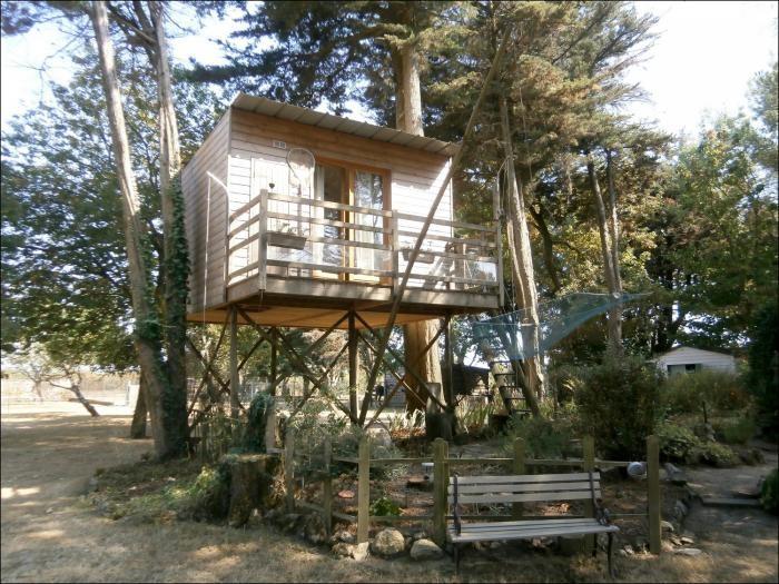 cabane dans les arbres en pays de la