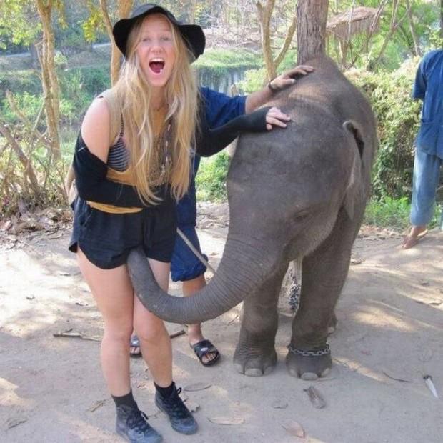 loira-elefante