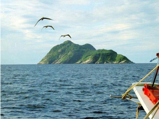 Ilha-de-Queimada-Grande-11