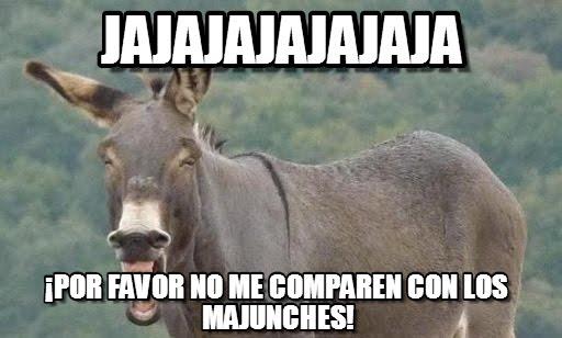 meme burro