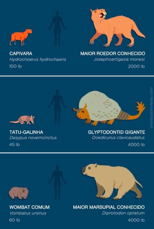 animais extintos 04