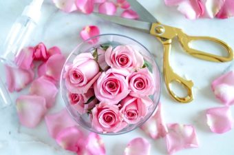 The Morning After: DIY Rose Water