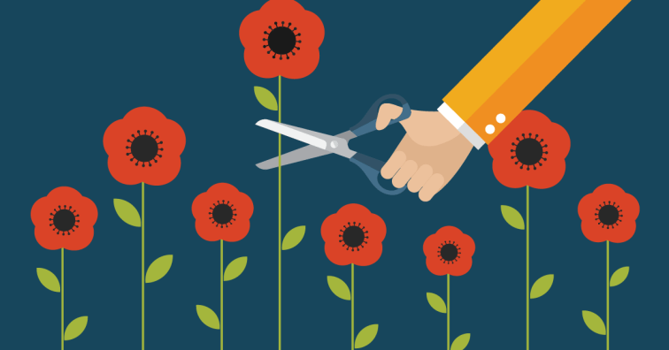 Root Out 'Tall Poppy Syndrome' – It Could Save Your Company - Insperity