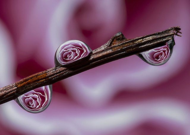 Water-Drops-Reflections-13
