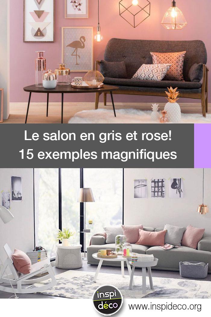 salon en gris et rose voici 15