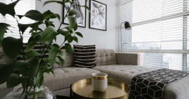 Living Room Couch Sofa Upholstery  - maxfranke / Pixabay