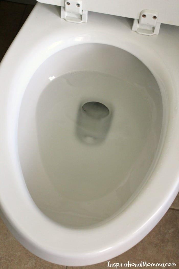 1-Ingredient Toilet Bowl Cleaner