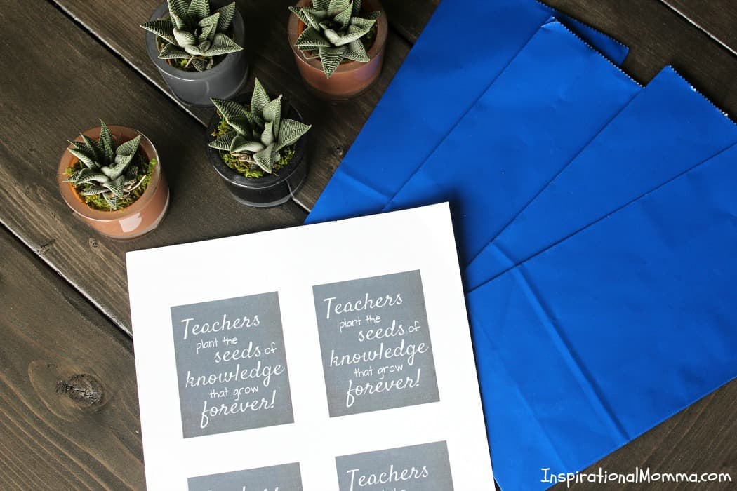 This Teacher Appreciation Printable is the perfect way to show just how much you appreciate the educator that influences your child every day!