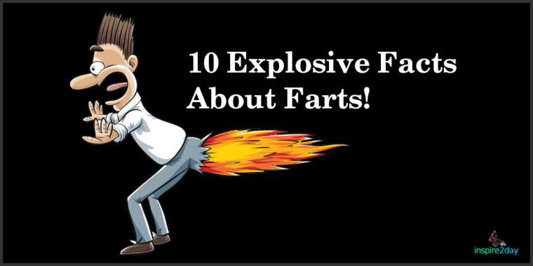 10 Explosive Facts About Farts!