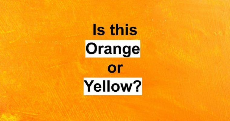 This Beautiful Color Test Will Reveal What Type Of Intelligence You Have