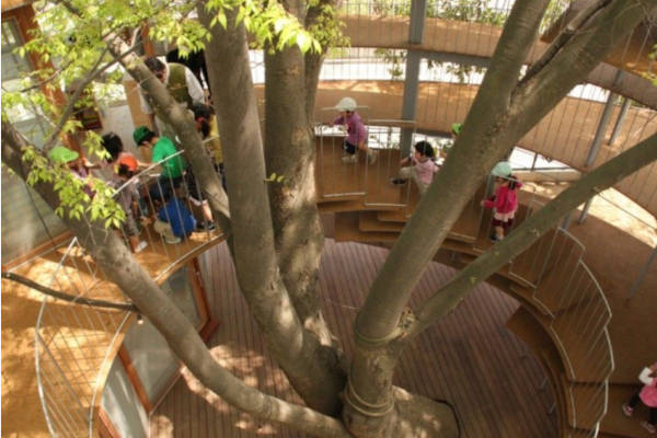 3. School In A Tree House