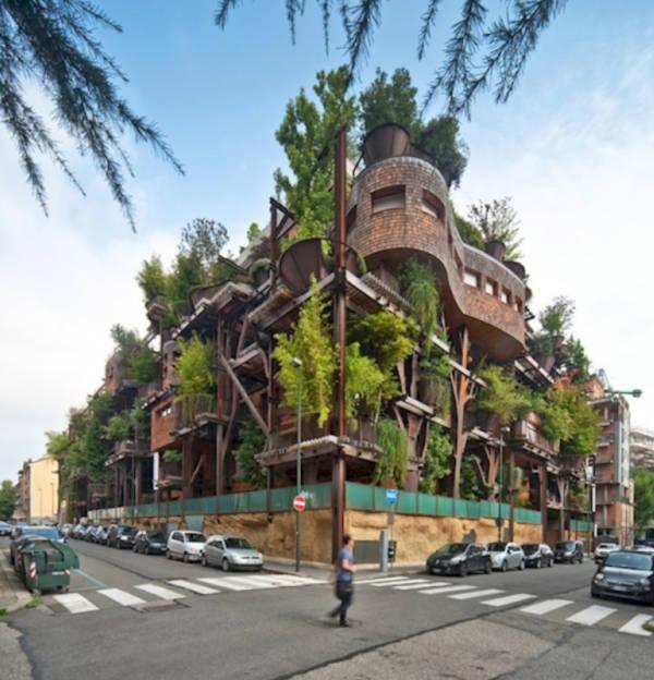 4. An Urban Jungle