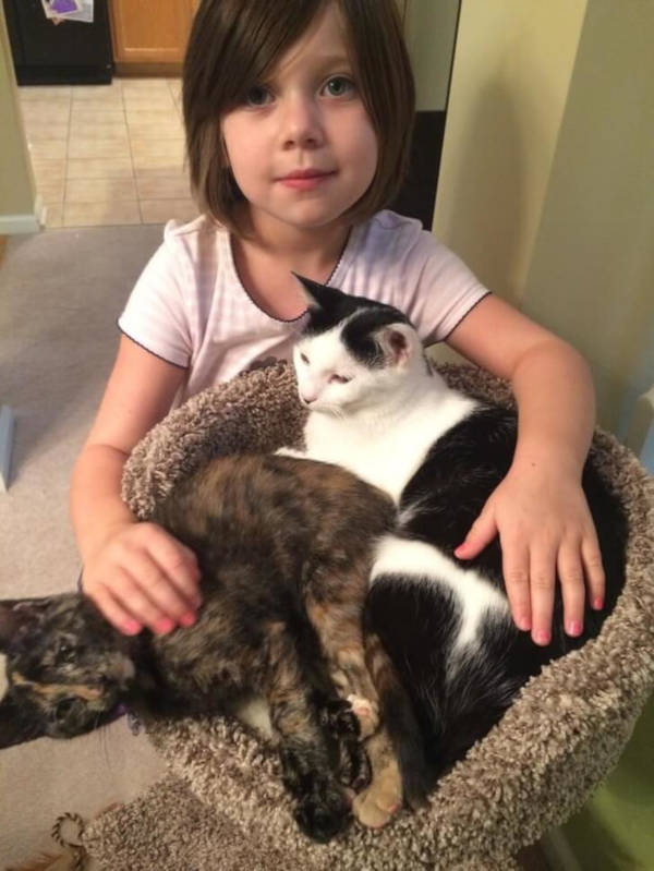 11. This child really appreciates her mother for adopting these cats and thinks that they are the very best!
