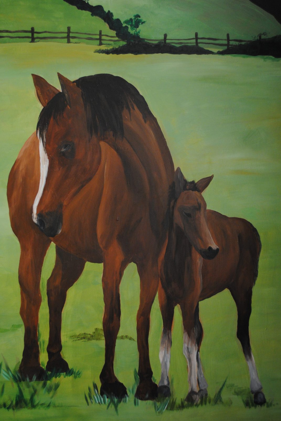 Horse Themed Children's Wall Murals