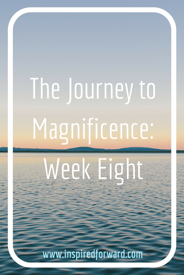 JTM Week 8 Pinterest v2
