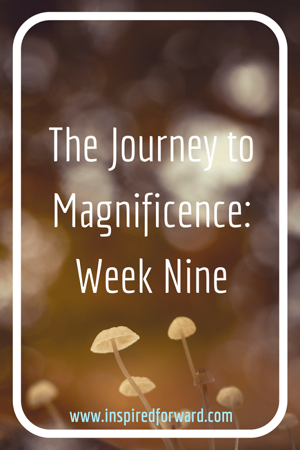 JTM Week Nine Pinterest v3