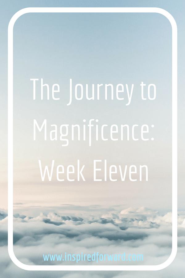 JTM Week Eleven Pinterest v2