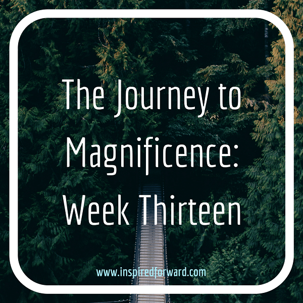 JTM Week Thirteen Instagram