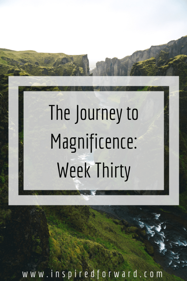 week thirty pinterest