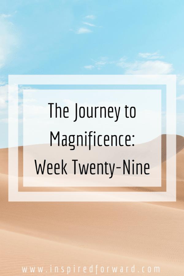 week twenty-nine pinterst-v1