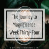 The Journey to Magnificence: Week Thirty-Four