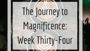 week thirty-four instagram