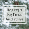 Week forty-two! I won NaNoWriMo, started practicing the Miracle Morning, clarified my goals for both December AND 2019, and started December's challenge.