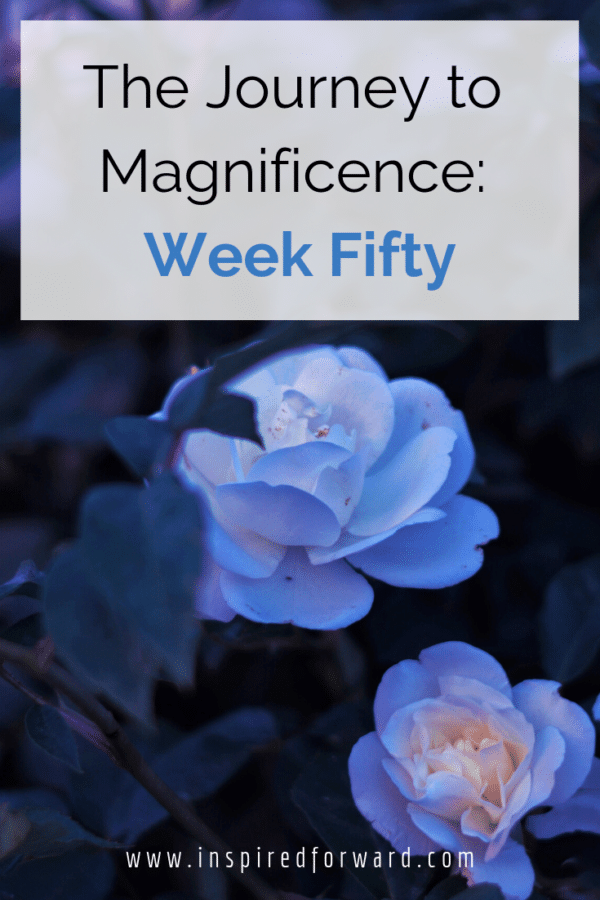 Week fifty has been inspiring, motivating, and proof that I can do what I've challenged myself to do, even though it can feel scary at first.
