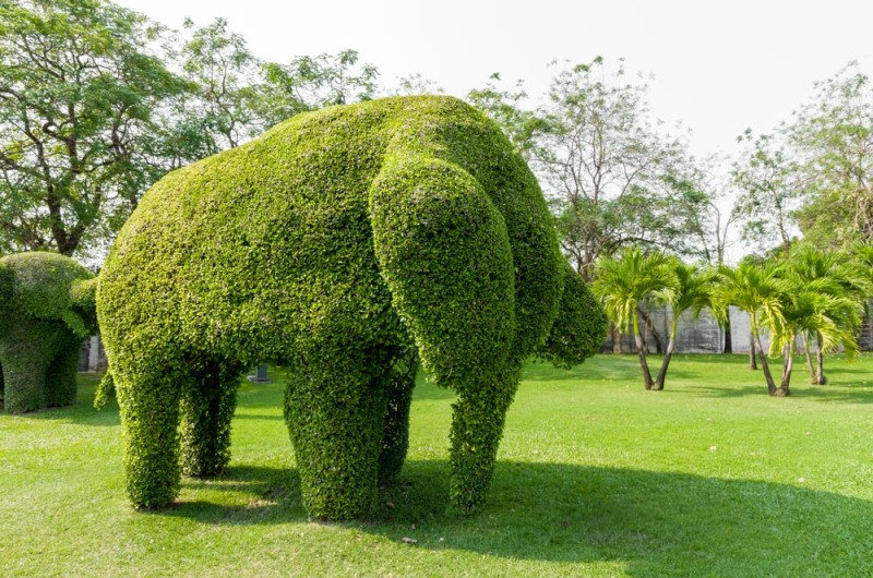 Garden Topiary Forms And Topiary Art