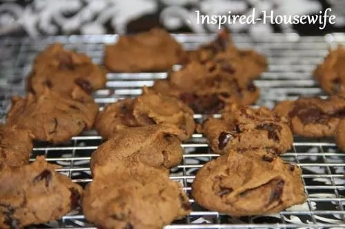 Grain-Free Chickpea Chocolate Chip Cookies