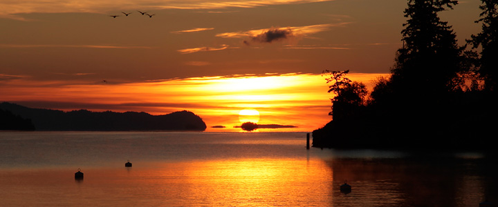 Sunrise on New Years Day in Ganges Harbour on Salt Spring Island, British Columbia