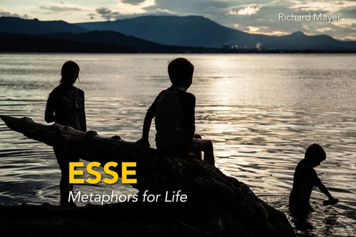 'ESSE ~ Metaphors for Life' by Richard Mayer :: Inspired Spaces