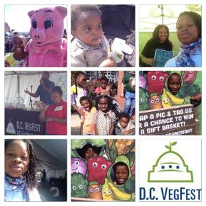Dc Veg Fest