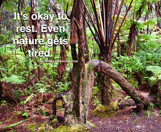 It's Okay to Rest. Even Nature Gets Tired.