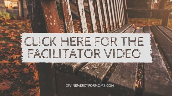 view the facilitator video2