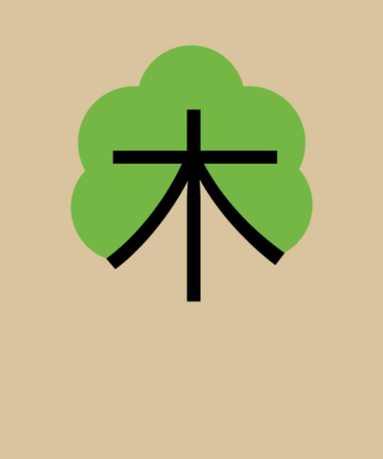 Chineasy imparare il cinese con le illustrazioni