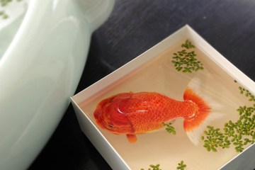 The fish in the resin of Keng Lye | Inspire We Trust