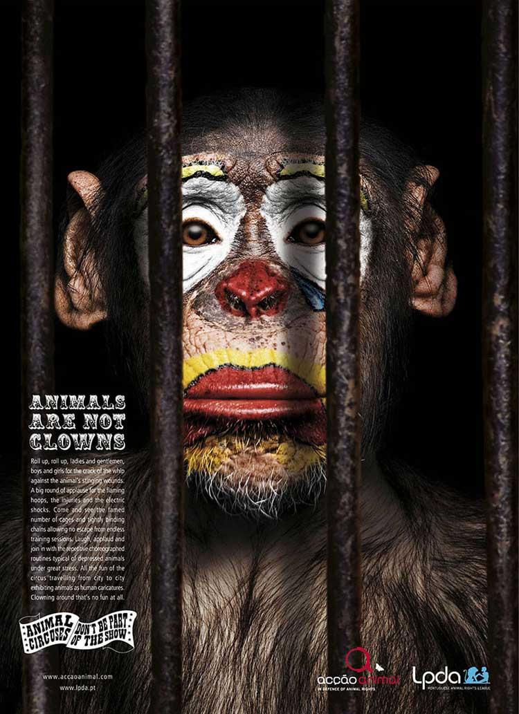 shocking advertising - animals