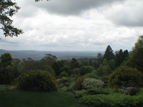 View from Mt Tomah Botanical Gardens