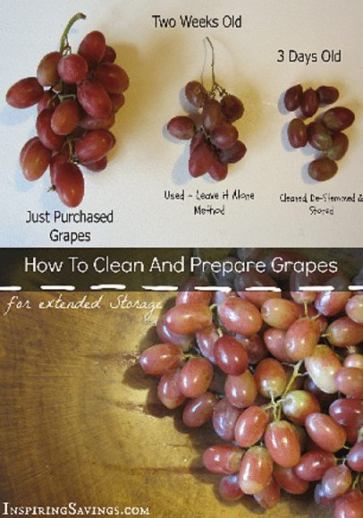 Fresh grapes in bowl with text overlay - how to clean and prepare grapes