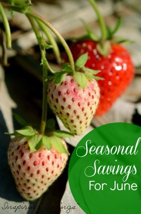 A great way to save money is to take advantage of seasonal savings. What is in Season for June can help you save all month long.June is a mixture of summer berries and stone fruit, with a few vegetables thrown in too. Find out all about June Seasonal Produce -- What's In Season Guide.#seasonalproduce#whatsinseason#eatseasonally