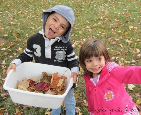 Kids Collecting leaves from backyard for art project