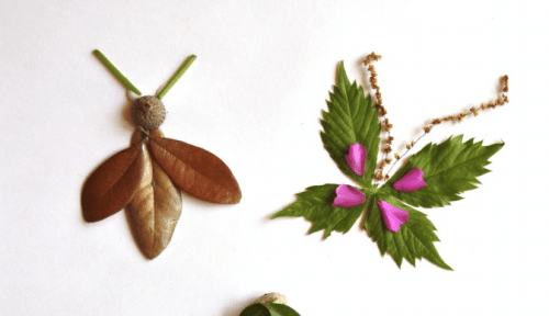 insects made out of leaves