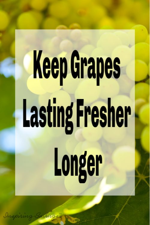 Green grapes with text overlay - Keep Grapes Lasting Fresher Longer