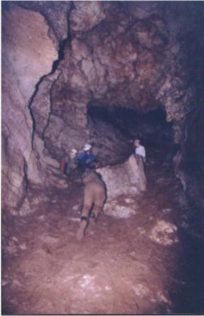 jester caves 115